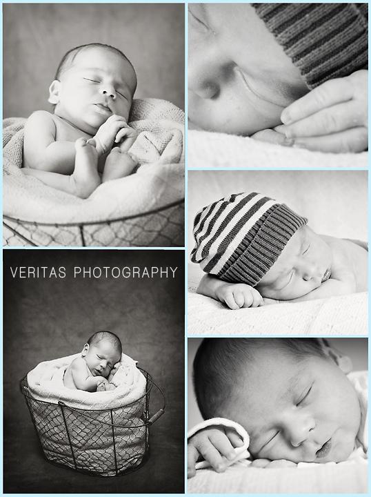 newborn photography, newborn posing, photographer